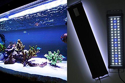 Aquarien Eco LED Aquarium Beleuchtung - Anubias
