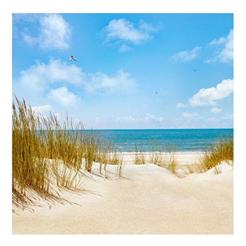 vlies fototapete strand an der nordsee original xxl vliestapete quadratisch tapete. Black Bedroom Furniture Sets. Home Design Ideas