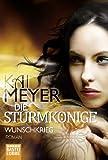 Die Sturmkönige - Wunschkrieg: Roman (German Edition)