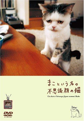 まこという名の不思議顔の猫(DVD)
