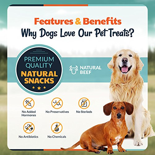 wyldlife pets bully sticks beef tendons for dogs combo pack 100 natural and free range 6. Black Bedroom Furniture Sets. Home Design Ideas