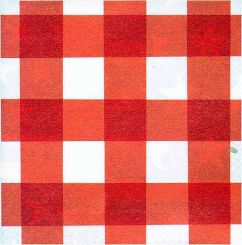 "Amscan Disposable 2-Ply Lunch Napkins In American Summer Red Gingham Print (16 Piece), 6.5 x 6.5"", Red/White"