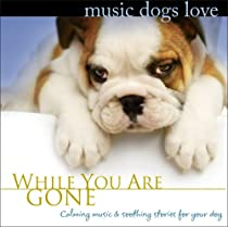 dog separation anxiety, music