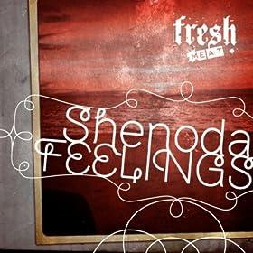 Shenoda - Feelings