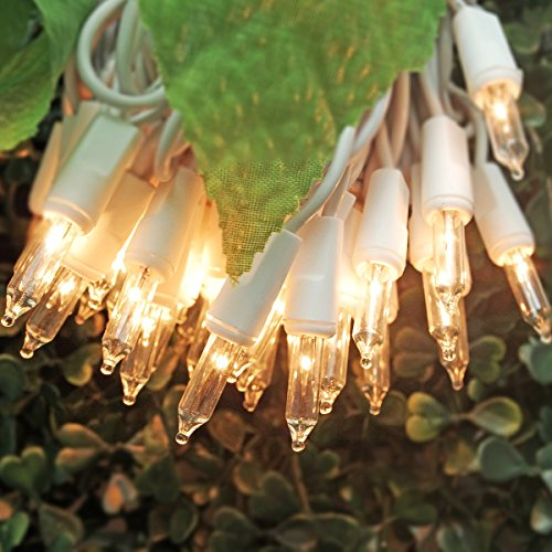How To String Lights On A Mini Christmas Tree : On h Christmas Lights 50 Clear Bulbs Mini String Lights Set Warm White Indoor Lighting for ...