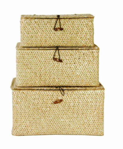 Wald Imports Set of 3 Seagrass Reed Trunks, Whitewash picture