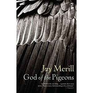 God of the Pigeons (Salt Modern Fiction)