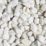 砂利 スノーホワイト 玉石砂利 1~2cm 白 水槽 サンプル