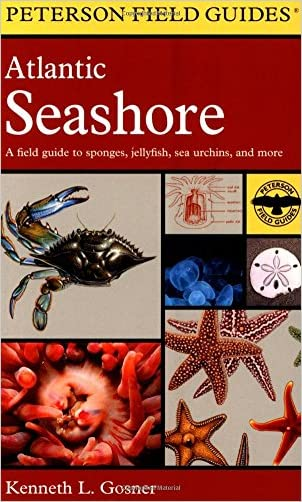 A Field Guide to the Atlantic Seashore: From the Bay of Fundy to Cape Hatteras (Peterson Field Guides) written by Kenneth L. Gosner