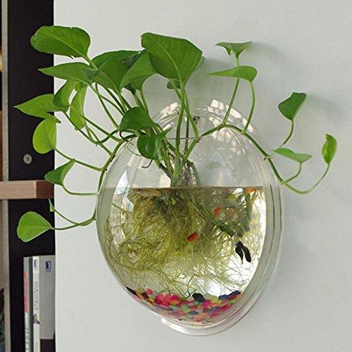yooyoo-creative-acrylic-hanging-wall-mount-fish-tank-bowl-vase-aquarium-plant-pot-bowl-bubble-aquari