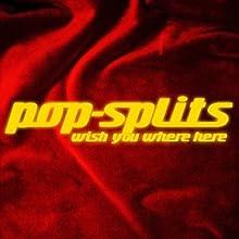 Pink Floyd - Wish you were here (Pop-Splits) Audiobook by  N.N. Narrated by Michael Pan