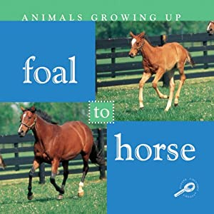 Foal to Horse Audiobook