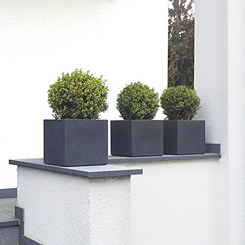 plantara pflanzk bel pflanztrog blumentrog quercus anthrazit 23x23 cm fiberglas quadratisch. Black Bedroom Furniture Sets. Home Design Ideas