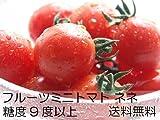 フルーツミニトマト『ネネ』2kg 北海道産!糖度9度以上♪果肉がトロ~とやわらかく濃厚※収穫出来次第、順次発送となります。