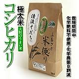 鳥取県産 白米 コシヒカリ 極太米【清流そだち】(10kg)平成23年度産[送料無料][常温]