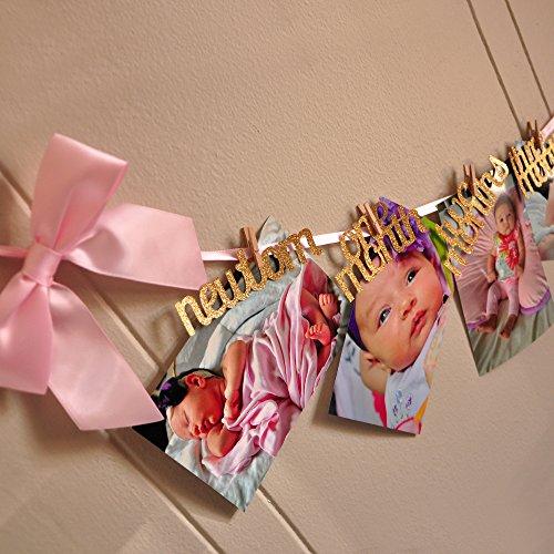 1st-Birthday-Girl-Decorations-12-Month-Photo-Banner-Monthly-Photo-Banner-Birthday-Garland