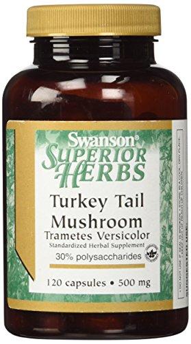 swanson-turkey-tail-mushroom-500-mg-120-caps