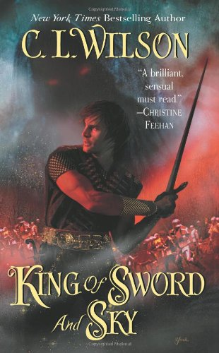 Image of King of Sword and Sky (Tairen Soul)
