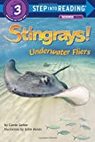 img - for Stingrays! Underwater Fliers (Step into Reading) book / textbook / text book
