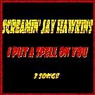 I Put a Spell On You (First Single + 1 Bonus)