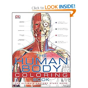 Human Body Coloring Sheets