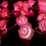KINGSO 20 LED Battery Operated Rose Flower String Lights Wedding Garden Christmas Decor (Pink)