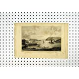 Impresión Antigua del Punto de Edgecombe Penlee del Soporte de la Isla de los Patos machos de la Visión C1836