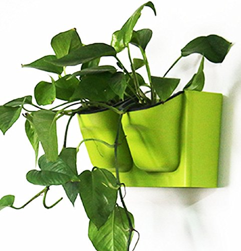 Self Watering Plant Pots Baclony Garden Vertical Wall Hanging Pot Planter,Green (Self Watering Hanging Planter compare prices)