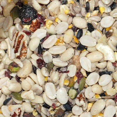 Wild Bird Seed Mix, Woodpecker Blend, 50 lbs. (Bird Food Shelled Sunflower Seeds compare prices)