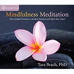 Mindfulness Meditation: Nine Guided Practices to Awaken Presence and Open Your Heart