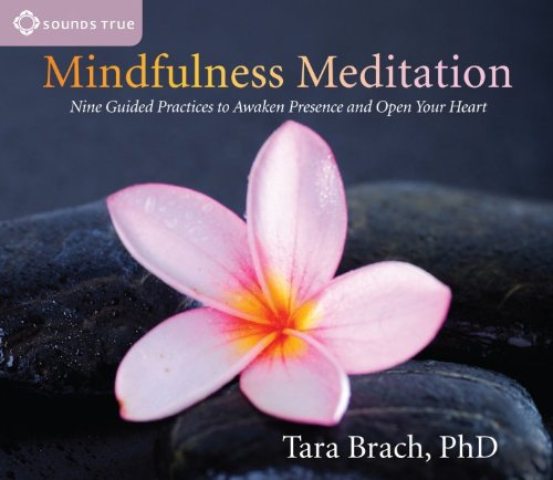 mindfulness-meditation-nine-guided-practices-to-awaken-presence-and-open-your-heart