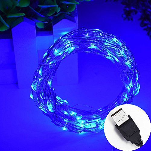 HAHOME 33Ft 100 LEDs USB Starry String Lights with Power Adapter for Wedding Christmas Party Decoration,Blue (Power Rice compare prices)