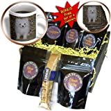 cgb_15767_1 Rebecca Anne Grant Photography Dogs - White Pomeranian Puppy - Coffee Gift Baskets - Coffee Gift Basket