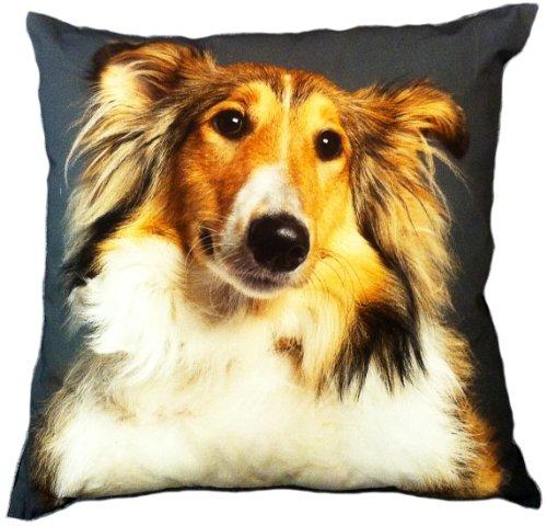 "Artiwa Sheltie Shetland Sheepdog Dog Cotton & Soft Velvet Sofa Couch Throw Decorative Pillow Cover 18""X18"" (Pc55A03) front-150842"