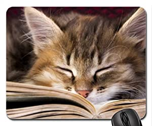Studious Tabby Mouse Pad, Mousepad (Cats Mouse Pad ...