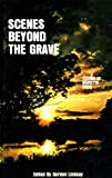 img - for Scenes Beyond the Grave: Visions of Maietta Davis book / textbook / text book