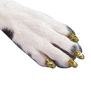 Amazon.com : Familia del perro y del gato de uñas Caps Take Home Kit