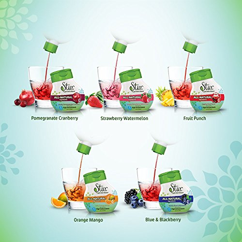Stur Gift Pack (5 bottle variety) - ALL-NATURAL Stevia Water Enhancer -- makes 100 8oz. servings - drink mix. High Antioxidant Vit. C, sugar-free, liquid stevia drops. (Natural Sugar Free Drink Mix compare prices)