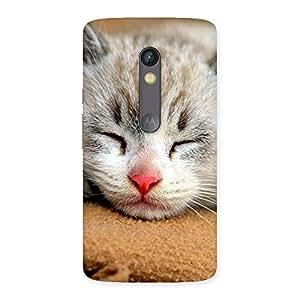 Ajay Enterprises Premium Cute Sleepings Cat Back Case Cover for Moto X Play