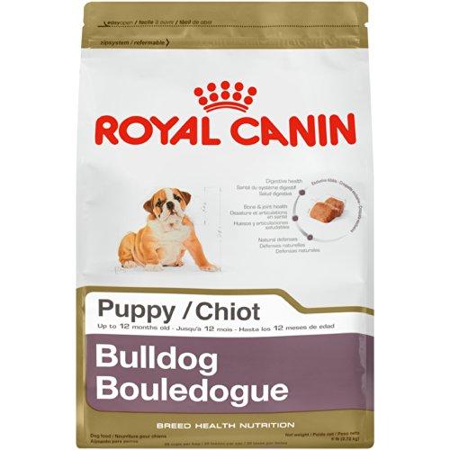 Royal Canin English Bulldog Puppy Food Reviews