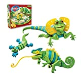 Bloco Lizards and Chameleons