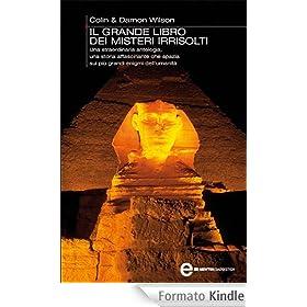 Il grande libro dei misteri irrisolti (eNewton Saggistica)