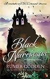 Black Narcissus: A Virago Modern Classic