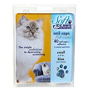tapeworm pills for cats