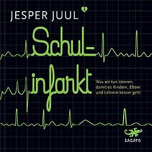 Schulinfarkt Hörbuch