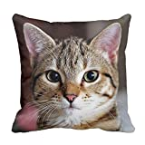 Custom Pillow Cover Cute Tabby Cat Kitten Pillowcases Cotton Cushion Cover 20 x 20