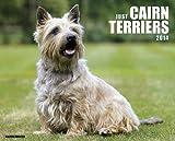 Just Cairn Terriers 2014 Calendar