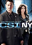 CSI: New York: Season 6 (Bilingual)