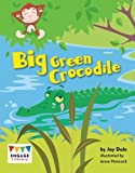 img - for Big Green Crocodile book / textbook / text book
