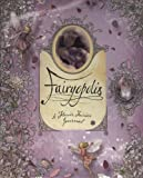 img - for Fairyopolis: A Flower Fairies Journal book / textbook / text book